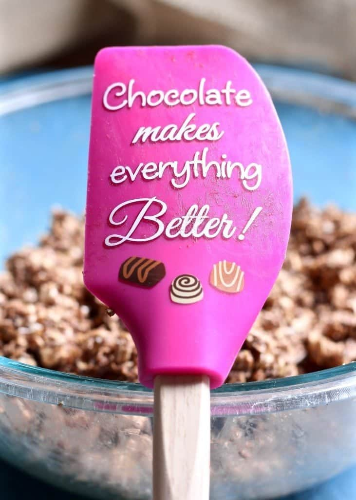 Chocolate Makes Everything Better spatula with chocolate granola in background