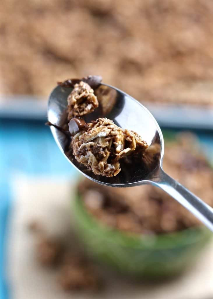 Close up of Triple Chocolate Coconut Granola Clusters on spoon
