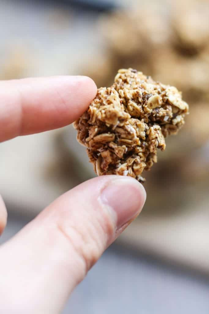 Gingerbread Granola cluster close up