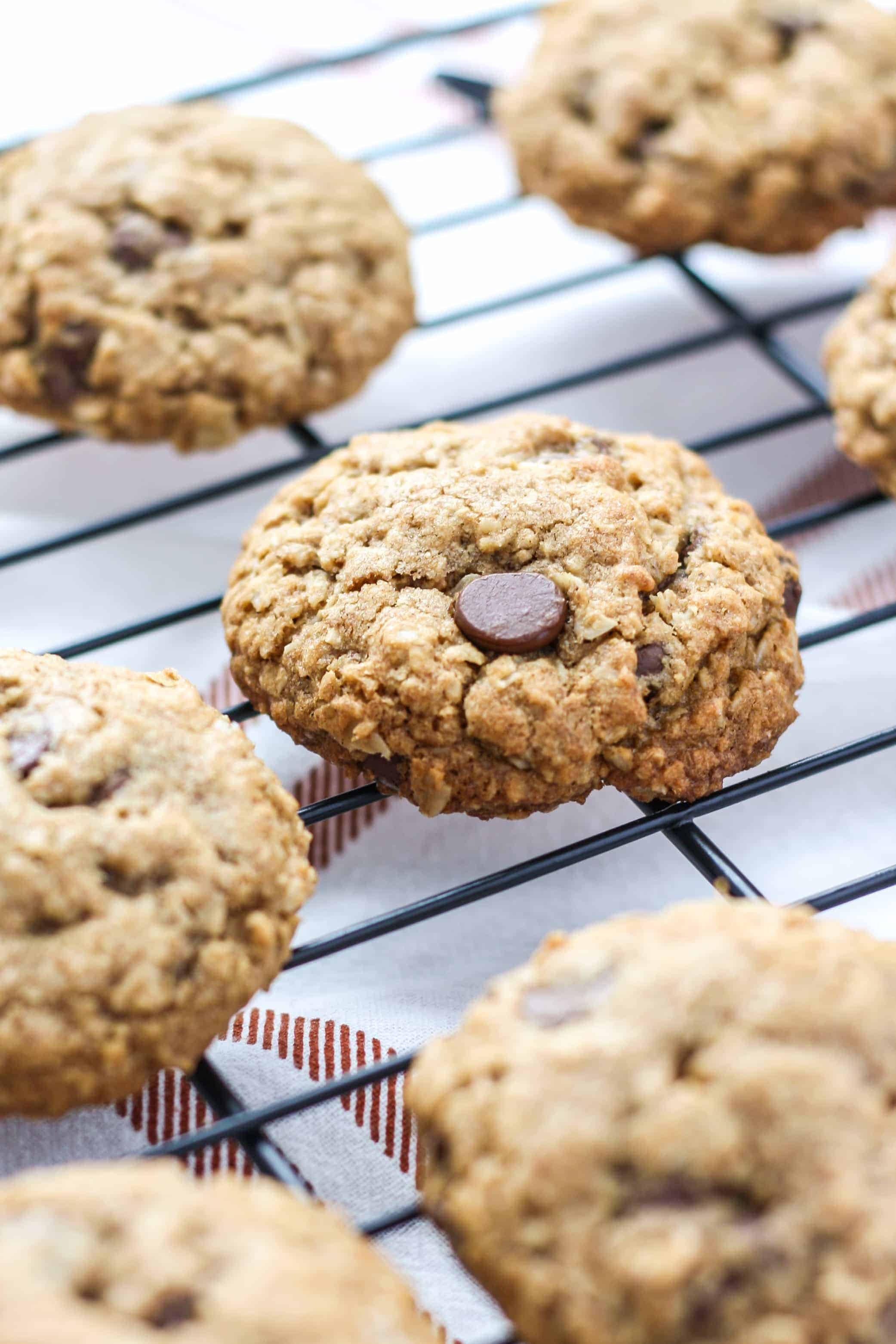 Whole Wheat Oatmeal Chocolate Chip Cookies - Fit Mitten Kitchen