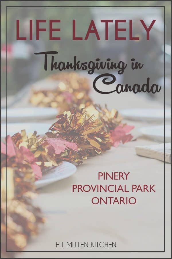 Life Lately Thanksgiving in Canada Pinery Provincial Park pinterest image