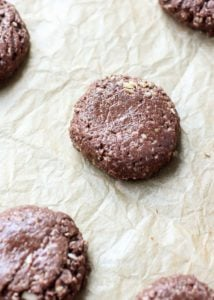 These vegan Grain-Free No-Bake Cookies are the perfect healthier no-bake cookie, made with a mix of nuts and seeds for a gluten-free, paleo-friendly treat!