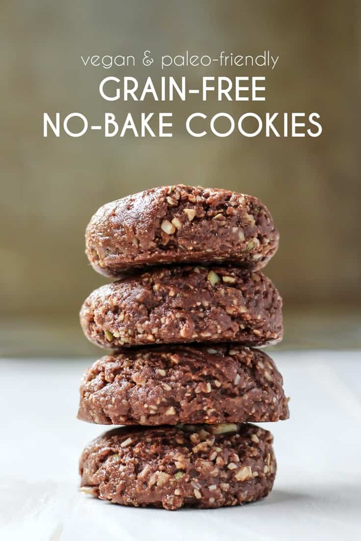 Vegan Grain-Free No-Bake Cookies pinterest image