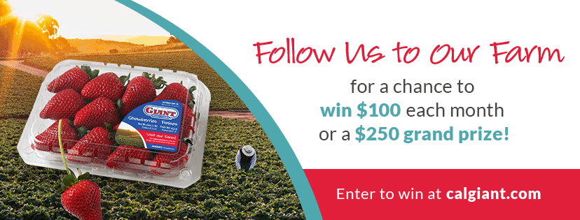 Follow us to our Farm Sweepstakes! | Strawberry Avocado Wrap - Fit Mitten Kitchen