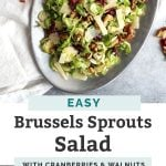 easy shredded brussels sprouts salad pin graphic