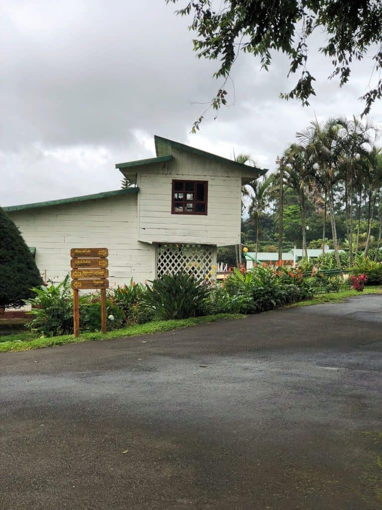Doka Coffee Estate