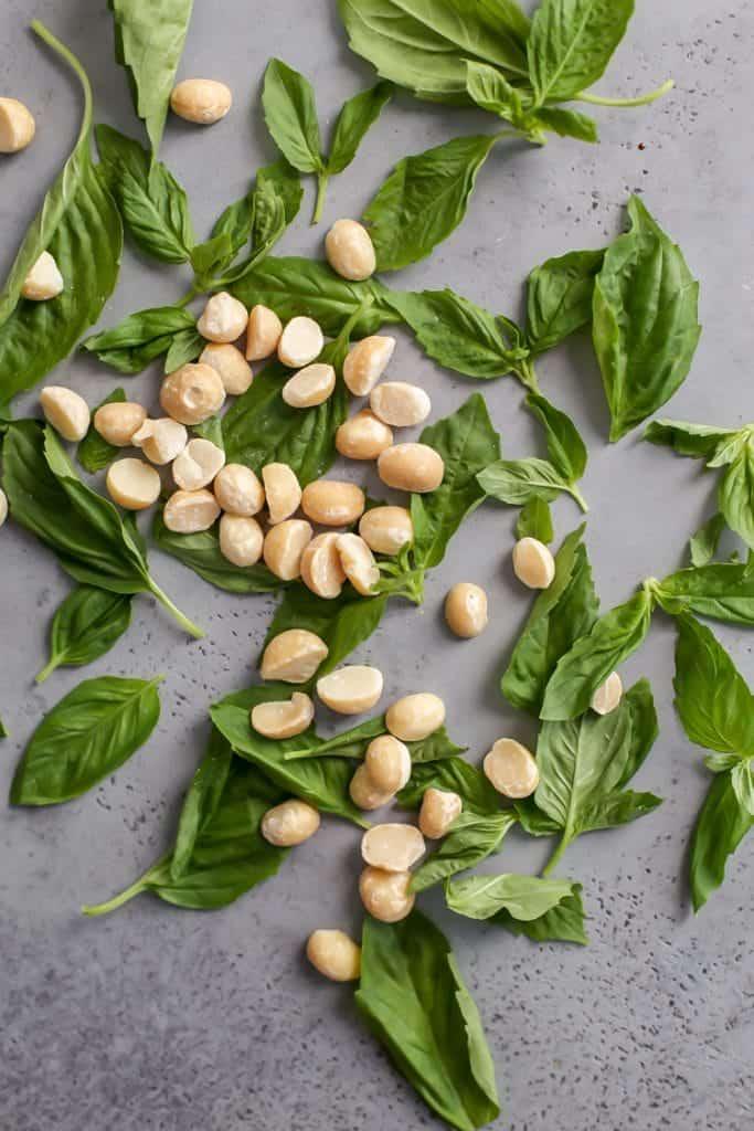 roasted macadamia nuts with fresh basil on gray board