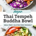 thai tempeh buddha bowl pin