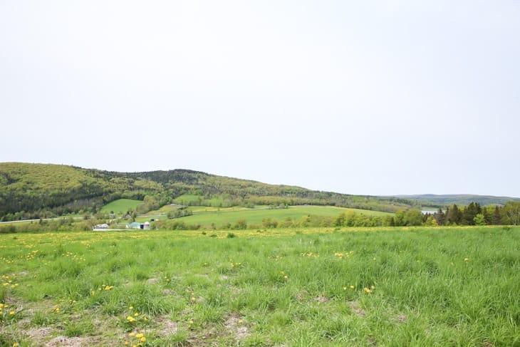 organic vermont dairy farm