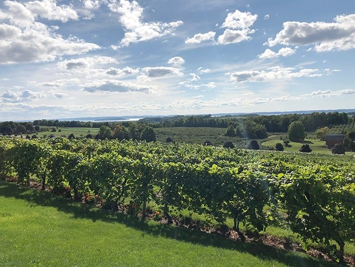 wine country in leelanau county mi