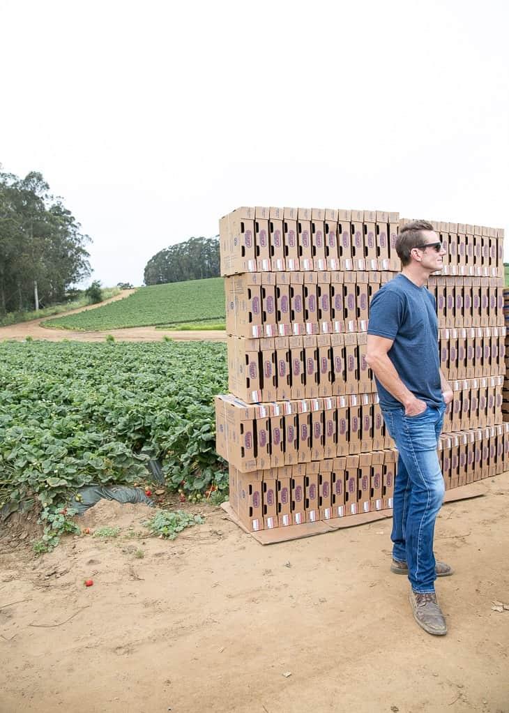 Morgan Farms of California Giant Berry Farms
