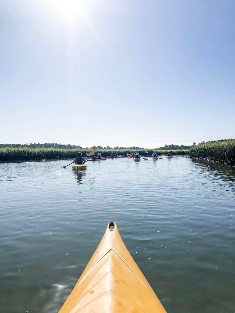 marsh kayaking in myrtle beach