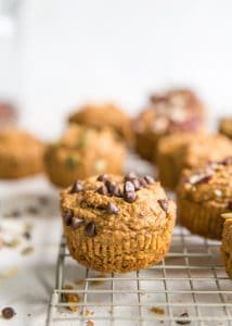 paleo pumpkin muffin with chocolate chips