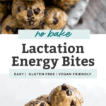 lactation energy bites